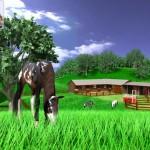 A Virtual Horse - gioco di cavalli