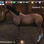 My Horse, gioco di cavalli nell'app store