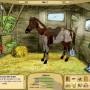 My horse farm - gioco di cavalli